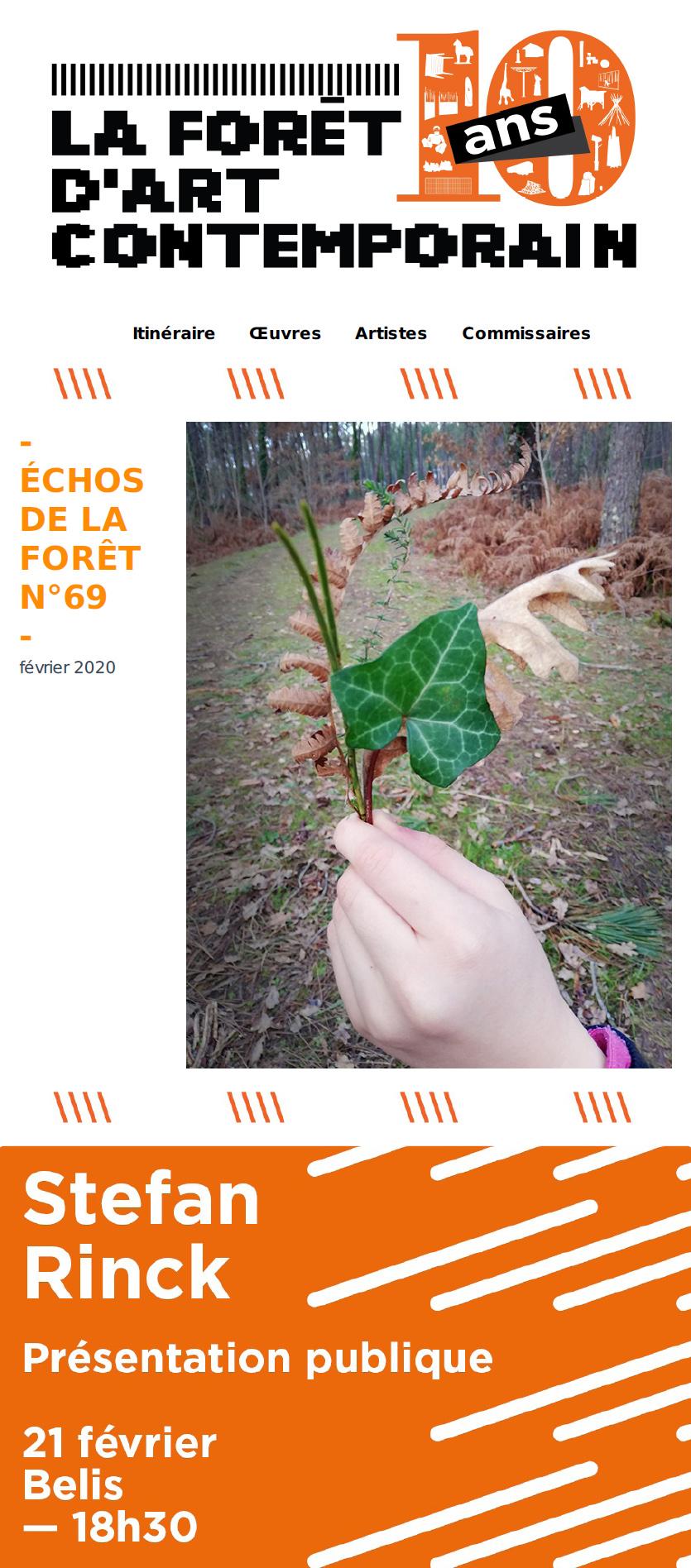 échos de la forêt